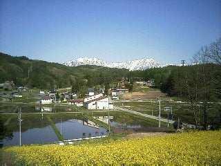 2007-05-14_07-530001.jpg