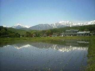 2007-05-21.jpg